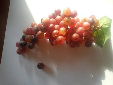 ovocie2